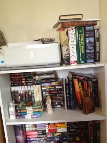 Bookshelf Tour Part 2: The Adult Section