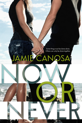Now or Never by Jamie Canosa Review Excerpt & Giveaway