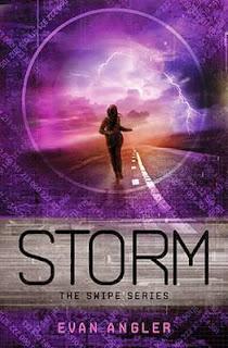 Storm (Swipe #3) by Evan Angler