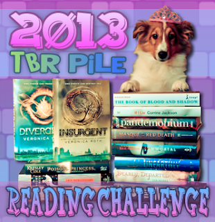2013 TBR Pile Reading Challenge Wrap Up