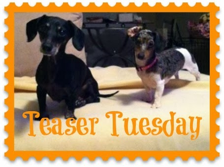 Teaser Tuesday – March 11th, 2014