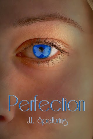 Review:  Perfection by J.L. Spelbring