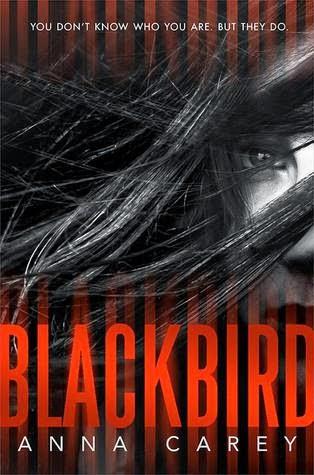 Review:  Blackbird by Anna Carey