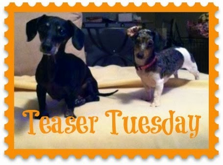 Teaser Tuesday – October 7th, 2014