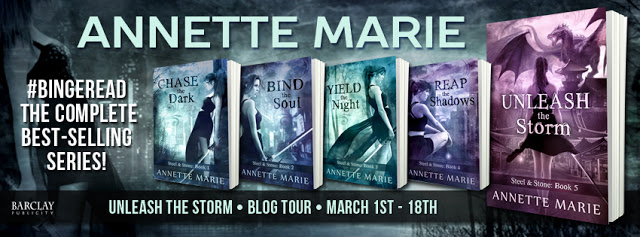Promo Post and Giveaway:  Steel and Stone Series by Annette Marie #Bingeread