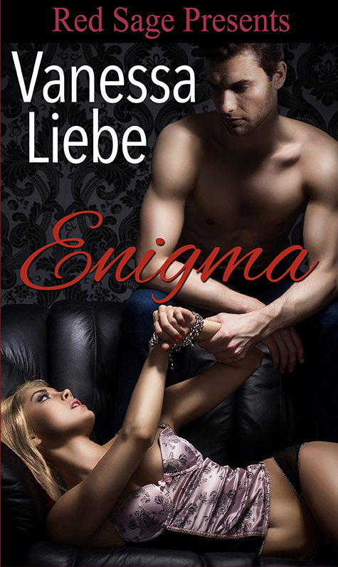 Cover Reveal and Giveaway:  Enigma by Vanessa Liebe