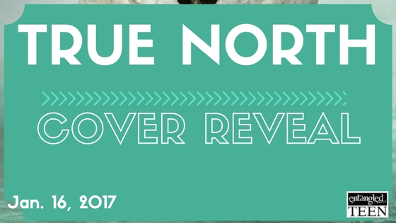 Cover Reveal:  True North by L.E. Sterling