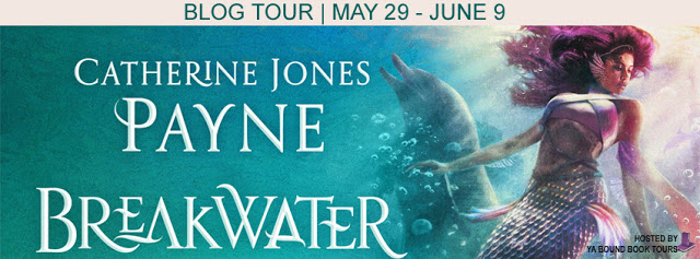 Blog Tour – Author Interview and Giveaway:  Breakwater by Catherine Jones Payne