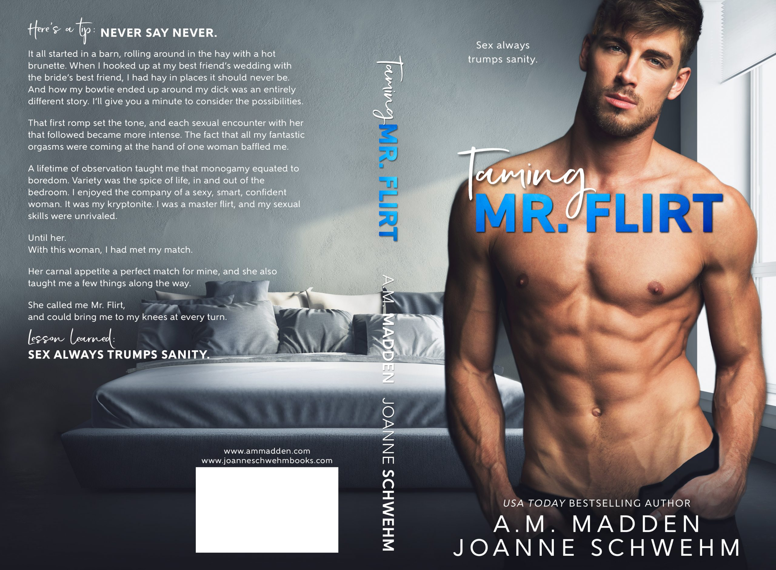 Promo Post:  Taming Mr. Flirt by A.M. Madden and Joanne Schwehm