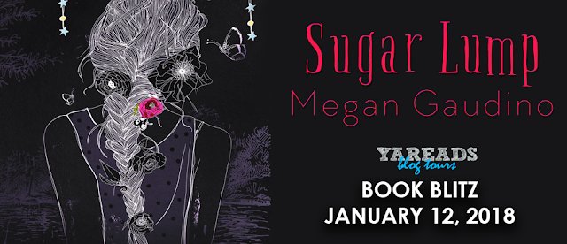 Book Blitz:  Sugar Lump by Megan Gaudino