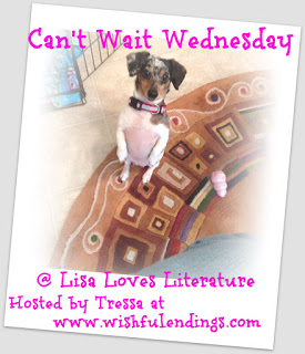 Can't Wait Wednesday #37:  Your Robot Dog Will Die by Arin Greenwood